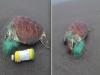 痛!民眾在沙灘發現「不明物體」走近一看當場傻眼!這「一張圖」直接打臉海洋環保問題...