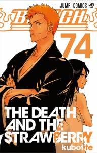 《死神BLEACH》最終一集封面引發熱議!網友痛罵:最後還想用一護露琪亞 CP 吸錢?
