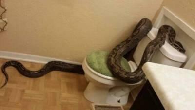 上這種廁所太可怕了吧