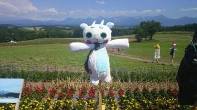 完全崩壞的日本稻草人大集合...我笑到肚子痛