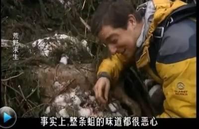 有一幫外國人在油管上吃皮蛋,吃著吃著,就吐了...