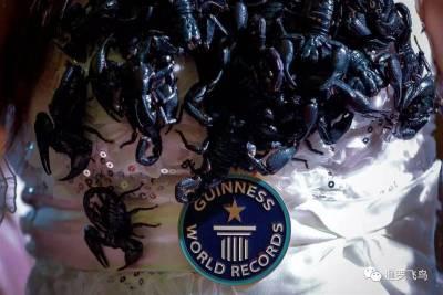 打破世界紀錄的她與5000隻活毒蠍共處33天裡,她被咬到13次,沒想到最後卻在記者會上...
