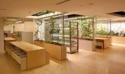 這家日本公司,把開心農場搬到公司裡,居然允許員工上班時間在辦公室裡種地,工作累了就去收割