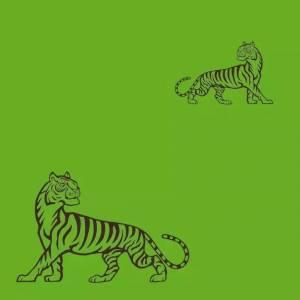擁有近乎完美色覺的人,才能找到老虎