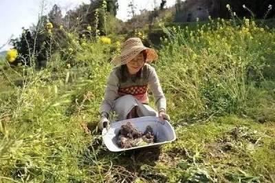 20年沒買過衣服,這對119歲夫妻吃土為生,卻讓10萬+城市人傾盡全部換他們的「一無所有」