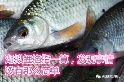 避孕藥被排入下水道...英國有很大一部分魚變性了....變性了!
