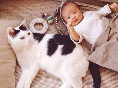 這個媽媽養了一個萌爆的喵星人,懷孕生下兒子後,驚呆所有人!