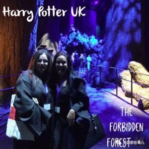哈利波特拯救了她的人生,從此,她讓自己活在了哈利的世界裡…