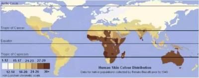 開腦洞:為啥黑人想白,白人想黑?