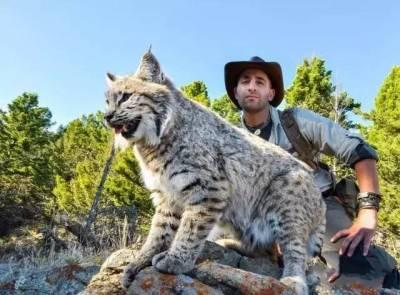 這名動物學家,擁有500萬粉絲超高人氣,專門研究小動物,然後讓牠們咬一口....