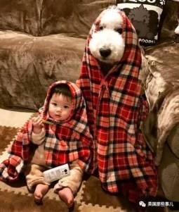 巨型汪星人+人類小幼崽的暖心日常…這賣萌組合簡直無敵了!