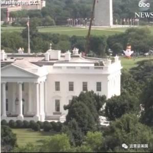 太原這隻雞凹了個造型,一夜之間紅遍全球,還火到了美國白宮...
