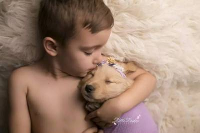 5歲兒子求麻麻再生一個寶寶,於是她帶回來了一隻金毛……