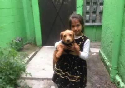 狗狗走丟沒有照片,小女孩畫了一幅「輪廓」就成功找回了狗狗!