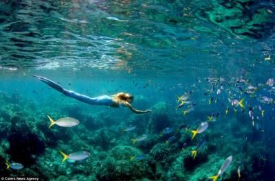 女子花10萬元訂製美人魚裝與鯊魚同游
