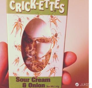 完全不懂這些發明者怎麼想…巧克力薄荷洋芋片,想試一下嗎?