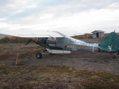 飛機在野外被隻黑熊啃爛,居然這樣就修好了...!!!