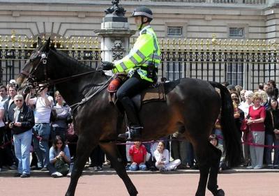 英國的制服誘惑!不愧是擁有尊貴皇室血統的國家!
