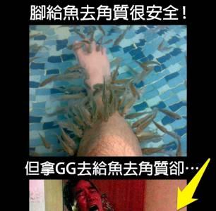 男子體驗「鰻魚浴」去角質 小鰻魚竟入侵他的GG