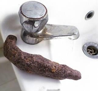 重口味翔皂外形酷似糞便【圖】 網友:實在太噁心了