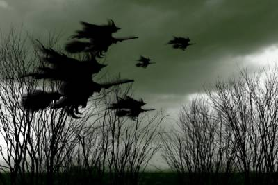 為什麼女巫都愛騎掃把!?這答案也太邪惡了......