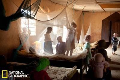 坦桑尼亞有魔法藥劑!材料竟然是用這個做的!!!