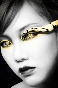 蛇美人 球蟒的臉,就跟小狗的臉一樣可愛啊!│尤物雜誌