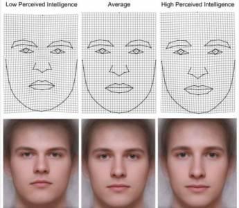 男人的長相可以判斷智商高低?