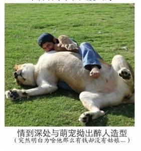 富二代養豹炫富,會不會太酷了!