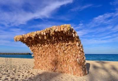 海灘出現3500個妹子的滔天巨浪!!!