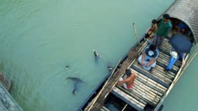 孟加拉漁民是這樣捕魚的...