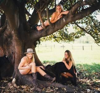 全裸2015月曆慈善募款 雪梨大學獸醫系跟草泥馬一同入鏡?!