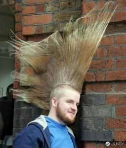 看完這 21 張「誇張」的頂上傑作後 說明了髮型對一個人果然很重要啊...