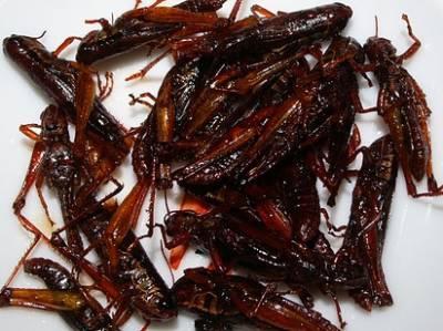 西方國家無法理解的23種亞洲美食