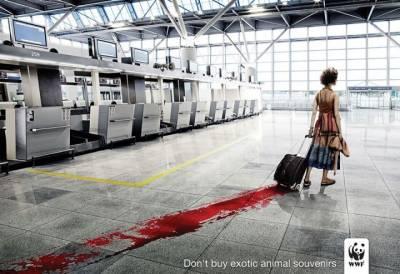 看了驚悚,卻必須分享的廣告,這世界正在發生這些事,只是我們不願面對