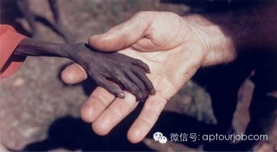 震驚全球!15件最悲慘事件 看照片你就心酸了