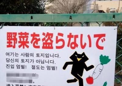日本人的告示牌,韓國 中國人都被當成狗了!