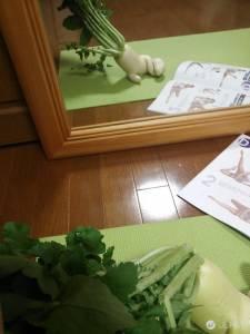 「農家大根逃走中!!」長出手腳的白蘿蔔糾竟下場會如何呢?