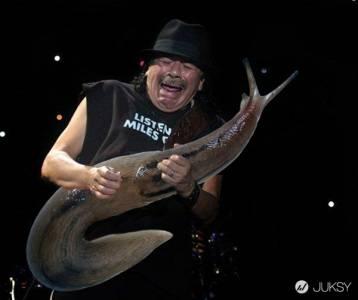 毫無違和感的表情啊! 利用PS把吉他手的琴變成蛞蝓吧!