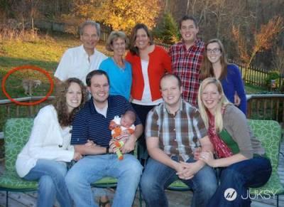 家庭合照不再溫馨...搞笑滿點的「另類團圓照」