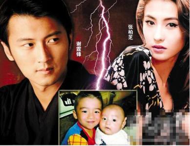 張柏芝謝霆鋒宣布離婚後,網友最經典的50條評論...