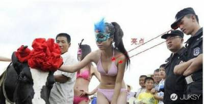 中國比基尼擠奶大賽?