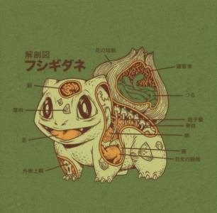 「神奇寶貝」解剖照!!原來牠們身體構造是這樣的...
