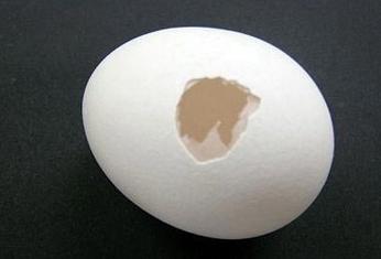 達人教你用一顆雞蛋就可以成功求婚