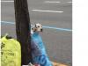 可惡至極!!!竟然把狗裝垃圾袋丟在路邊!!怎麼會有這種人!!?