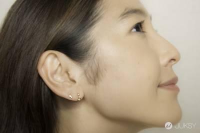 專屬女孩的輕奢華 日本Aurora Gran 2014 Christmas Collection 耶誕限定系列 閃耀發售