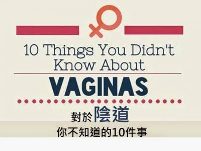 關於陰道你不知道的10件事