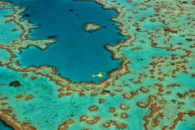 四招收買女人心!搶先預約澳洲漢密爾頓島的浪漫情人節