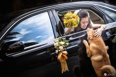 感人親情 爆笑時刻全都收錄在2014年度經典婚禮照