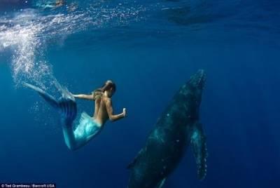 傳說中的美人魚是雄性?!